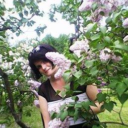 Галина, 35 лет, Енакиево