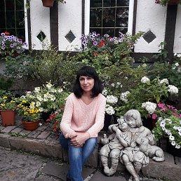 Татьяна, Томск, 48 лет