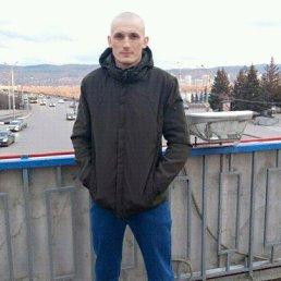 Алекс, 29 лет, Залесово