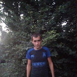 Сергей, 26 лет, Платнировская