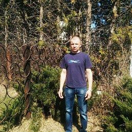 Sergej, 40 лет, Ковель