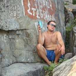 АЛЕКСАНДР, 31 год, Завьялово