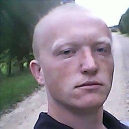 Николай, 23 года, Шаховская