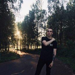 Mikhail, 24 года, Тихвин - фото 1
