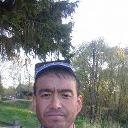 Шухрат, 42 года, Новозавидовский