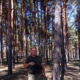 Andrey, 37 лет, Железный Порт