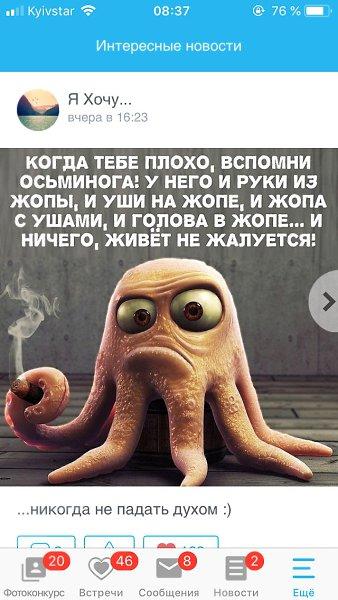 Картинка про осьминога прикол