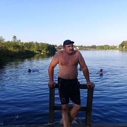 Андрей, 48 лет, Батецкий