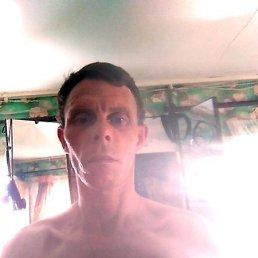 Дмитрий, 36 лет, Крестцы