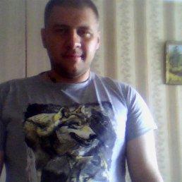 Евгений, Вологда, 38 лет