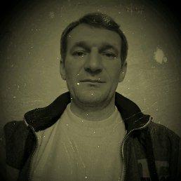 Александр, 44 года, Данилов