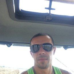 Анатолий, 27 лет, Херсон