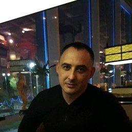 Ruslan, 38 лет, Ростов-на-Дону - фото 4