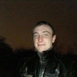 niko, 31 год, Наровля
