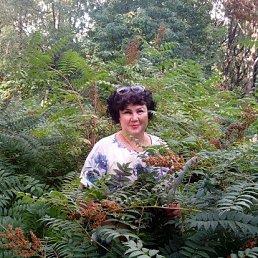 Наташа, 56 лет, Лобня