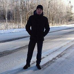 Владимир, 41 год, Ельня