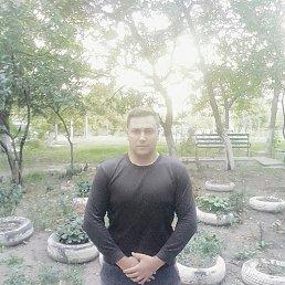 Макс, 27 лет, Пологи