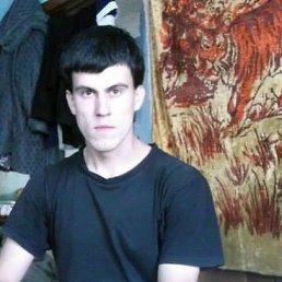 Alexandr, 29 лет, Колывань
