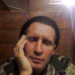 антон, 37 лет, Полтава