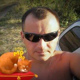 Илья, 37 лет, Ефремов