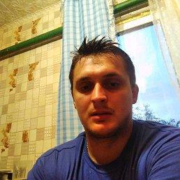 Серый, 29 лет, Вышний Волочек