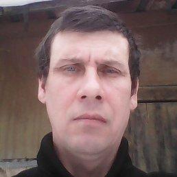 сергей, 47 лет, Шарья