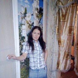 Лена, 36 лет, Сокол