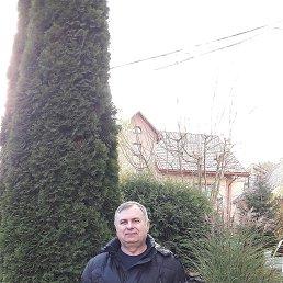 Анатолий, 58 лет, Белгород-Днестровский