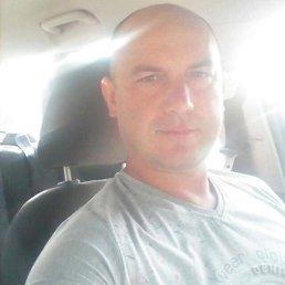 Михаил, 50 лет, Ивантеевка