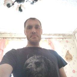 Алексей, 40 лет, Ступино