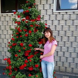 Таня, 34 года, Черновцы
