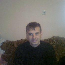 Віталік, 33 года, Полонное