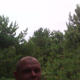 Александр, 29 лет, Энергодар