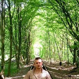 Yorik, 27 лет, Кременец