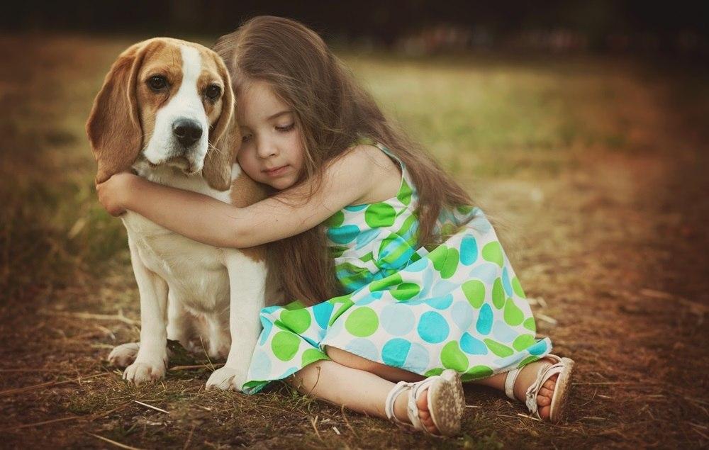 Породистые щенки в добрые руки