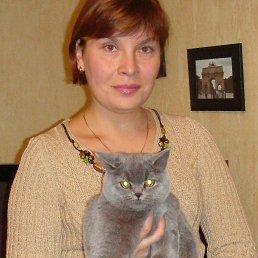 ольга, 49 лет, Киев