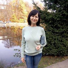 Людмила, 53 года, Винница