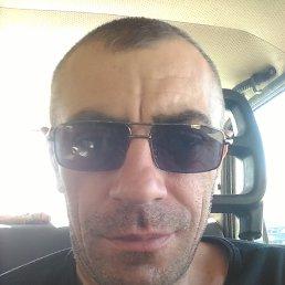 Сережа, 44 года, Котовск