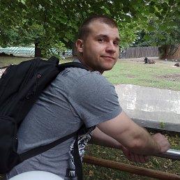 Дмитрий, 28 лет, Заречный