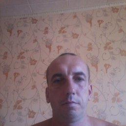 Виктор, 40 лет, Иваново