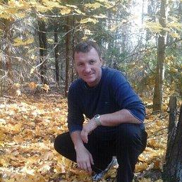 Вадим, 56 лет, Брянск