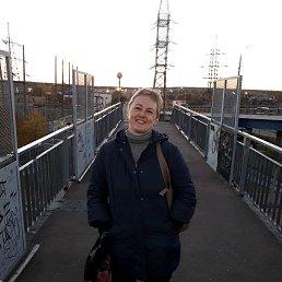 Дарья, 43 года, Климовск