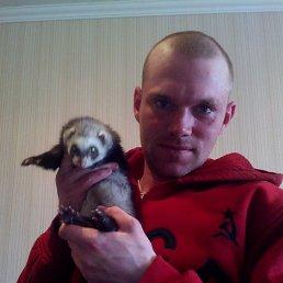 Костя, 28 лет, Орел