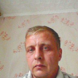 Анатолий, 43 года, Елань