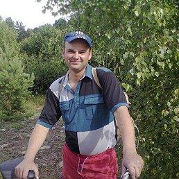 Нелик, 41 год, Ковель