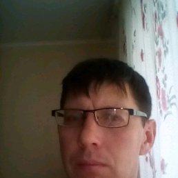 Виктор, 38 лет, Менделеевск