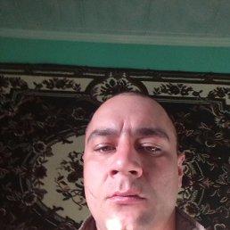 Саша, 29 лет, Хотин