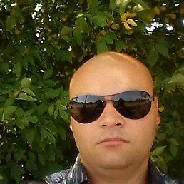 Янчик, 25 лет, Плавск