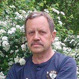 Александр, 65 лет, Бровары