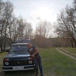 Лёха, 29 лет, Михайловка